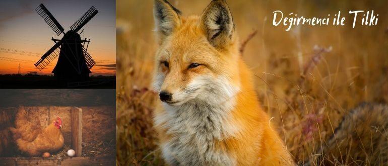 Мельник и лиса
